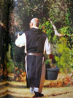 ブドウ畑で作業中の僧