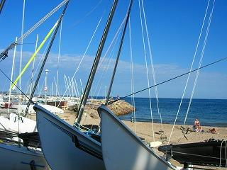 パームビーチ2
