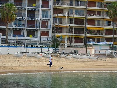浜辺といえば犬とジョギング